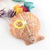 Dyed Seashell Aeolian BellsAJEW-Q108-01-4